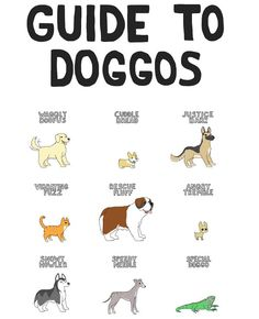 Guide to Doggos - Neatorama