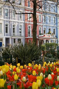 Houses on Colville Square in Notting Hill, Borough of Kensington and Chelsea.