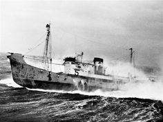 Merchant Navy, Old Port, Stavanger, Whales, Corvette, Sailing Ships, Thor, Diesel, Boat