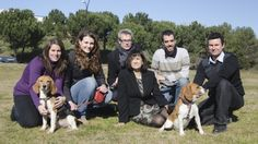 A University of Barcelona research team has cured type 1 diabetes in dogs using a single session of gene therapy.  In some cases, monitoring of the dogs went on for a four year period with no recurrence of the disease
