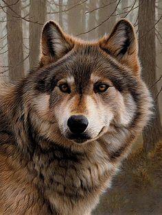 Собирать пазлы онлайн - Волк