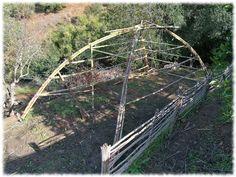 Formando la estructura Wood, Green Houses, Permaculture, Vivarium, Woodwind Instrument, Timber Wood, Trees