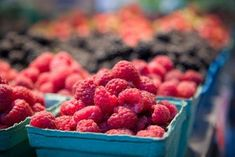 Tips for planting raspberries in containers
