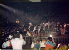 Elvis in concert. Pictures like this help share a bit of the experience of seeing Elvis live. Ricky Stanley is sitting cross-legged on the stage. Elvis Presley 1977, He Chose Me, Sitting Cross Legged, Elvis In Concert, David Lee Roth, Graceland, Candid, First Time, Crowd