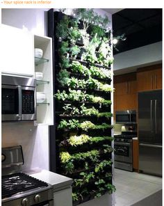 Now that's my kinda spice rack!