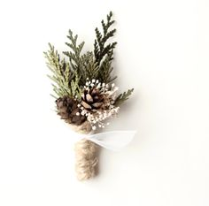 Wedding boutonniere, groomsmen button hole, Woodland rustic boutonniere, natural keepsake, Winter Weddings - FROST - ask for red ribbon?