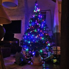 Pin for Later: Stars Get Sweet and Silly in Their Holiday Pictures!  Gisele Bündchen shared a shot of her stunning Christmas tree.