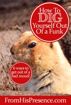 How To Dig Yourself Out of a Funk by Jamie Rohrbaugh | FromHisPresence.com Blog