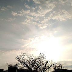 おはようございます今日もいい天気です() #sky #cloud #空 #雲 #イマソラ #goodmorning #おはよう