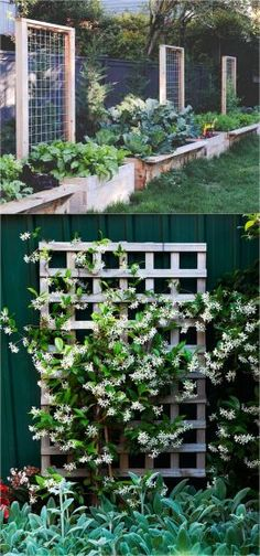 21 Easy DIY Garden Trellis Ideas & Vertical Growing Structures Create enchanting garden spaces with 21 beautiful and DIY friendly trellis and garden structures, such as tunnels, teepees, pergolas, screens and more! - A Piece Of Rainbow Garden Ideas To Make, Diy Garden, Garden Beds, Garden Projects, Diy Projects, Diy Trellis, Garden Trellis, Trellis Ideas, Lattice Ideas