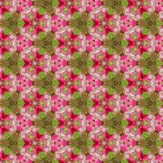 Blossoms_510_X_294 fabric by bahrsteads on Spoonflower - custom fabric