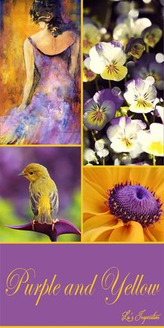 """I hope you all had a wonderful day today. Thank you for all the lovely dusty rose pins. Tonight and Tomorow lets's pin this color board of """" PURPLE AND YELLOW """" Thank you and Happy Pinning. ❤"""