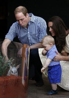 Kate Middleton - The Duke And Duchess Of Cambridge Tour Australia And New Zealand - Day 14