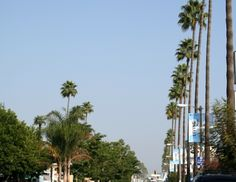 The official place for things to do in Los Angeles. Ventura Boulevard, San Fernando Valley, Home And Away, Hiking Trails, Palms, Stuff To Do, The Neighbourhood, Tourism, Explore
