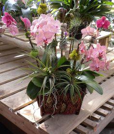 Exotic Flower Arrangements | Exotic center pieces, custom tropical arrangments, visit us to view ...