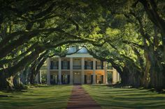 Southern Manor ...look at those trees!!