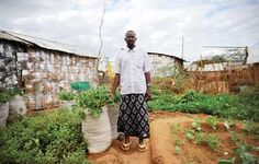 The Constant Gardeners - Confronting climate change and poverty, a new crop of city farmers comes of age in Africa.