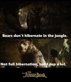 1063bf4970dcd1 Bagheera Bears don t hibernate in the jungle Baloo Not full hibernation but  I nap a lot quoteone liners
