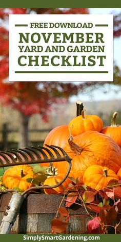 Not sure what you need to do in your yard & garden this November? Download my free home landscape checklist. It includes tasks for your yard & garden and lawn care tips. It's the ultimate cheat sheet for your November landscape. Learn what you need to do