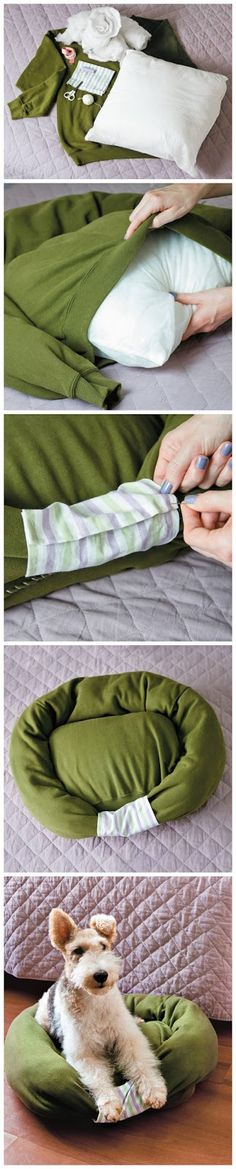 This looks easy enough for me!  How to make a pet bed from an old sweatshirt. Just did this and my cat claimed it before it was finished...... But all our pillows are tempurpedic, so I'll have to buy new ones but it's cool, they're worth it