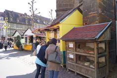 Les lapins (de Pâques) - Colmar Fete le printemps - Alsace - France #travel www.printemps-colmar.com