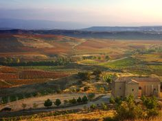 Spain's wine regions: Sherry of Andalucia