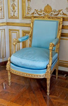 Marie Antoinette's Playhouse: Marie Antoinette's love of dogs can be traced to her childhood in the Hapsburg Court in Vienna, as seen in the top portrait of Marie Antoinette's mother, Empress Maria. Decor, Furniture, French Chairs, Chair Design, Luxury Furniture, Decorative Chair, Classic Chair Design, Period Furniture, Louis Xvi Furniture