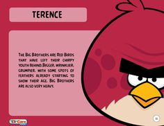 All about Terence AKA the Big Brother Bird from Angry Birds