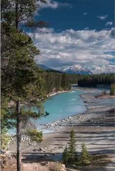 Did you know? The Athabasca River originates from the Columbia Glacier of the Columbia Icefield in Jasper National Park. To us, this is one of the most beautiful rivers in Canada!
