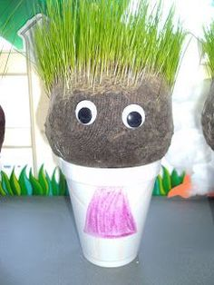 home made chia pets - materials: panty hose, styrofoam cups, potting soil, Winter Rye Grass Seeds, decoration materials (e.g. googly eyes, markers, etc.). Soak seeds first to help grass grow more quickly.