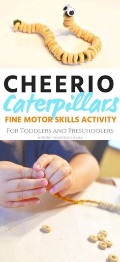 Cheerio Caterpillars (fine motor skills for toddlers and preschoolers) .Cheerio Caterpillars (fine motor skills for toddlers and preschoolers) . - the summer activities Nanny Activities, Fine Motor Activities For Kids, Motor Skills Activities, Toddler Learning Activities, Infant Activities, Fun Learning, Preschool Fine Motor Skills, Educational Crafts For Toddlers, Weather Activities