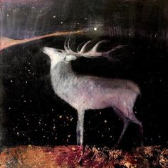 Into The Velvet Darkness by Catherine Hyde
