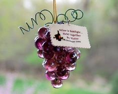 Health nuts will love this unique ornament. It looks so professional, but the tutorial reveals just how easy this homemade Christmas ornament is to make. I LOVE GRAPES Rustic Crafts, Cork Crafts, Bottle Crafts, Diy Crafts, Christmas Ornament Crafts, Christmas Tree Ornaments, Holiday Crafts, Cork Ornaments, Ball Ornaments