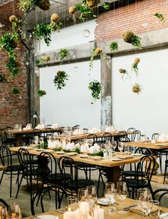 How to Incorporate Potted Plants Into Your Wedding (and Home After!) - Green Wedding Shoes