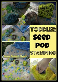 Mummy Musings and Mayhem: Toddler Seed Pod Stamping! Sensory Activities Toddlers, Creative Activities For Kids, Spring Activities, Fun Activities, Toddler Teacher, Toddler Play, Toddler Preschool, Preschool Ideas, Preschool Garden