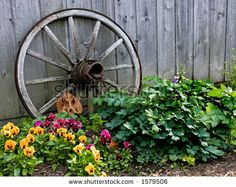 Superbe An Old Wagon Wheel Displayed As A Garden Decoration | Out In The Garden |  Pinterest | Wagon Wheels, Wheels And Display