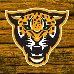 Cheetah.jpg Más