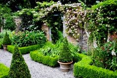 The Long Walk, Wollerton Old Hall Garden