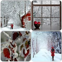 Hiver - neige ❤️✼❤️✼.Snow Winter
