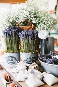 Dried French Lavender topiary arrangements for Wedding Decor - here in galvanized tin French Florist Cans
