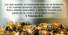1_ Timoteo 6:9
