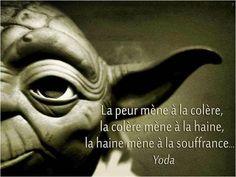 La #peur mène à la #colère , la colère mène à la #haine , la haine mène à la #souffrance
