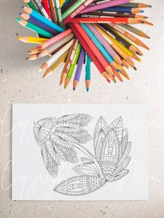 Paisley Coloring Pages, Flower Coloring Pages, Coloring Pages For Kids, Coloring Sheets, Landscape Walls, Landscape Prints, Big Wall Art, Wall Art Crafts, Mandala Print