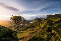 Sunrise at the Quiraing Isle of Skye [OC] [20481367] #reddit