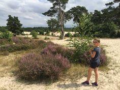 In natuurgebied Soester Duinen kan je heerlijk wandelen met kinderen. De blauwe route is 5 km en erg afwisselend. Daarna spelen bij de zandverstuiving.