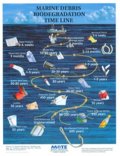 Chart displaying how long trash takes to biodegrade in the ocean