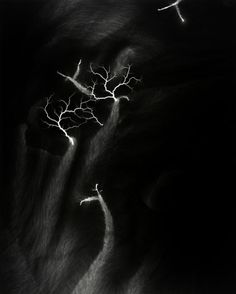 Hiroshi Sugimoto Lightning Fields 119 2009