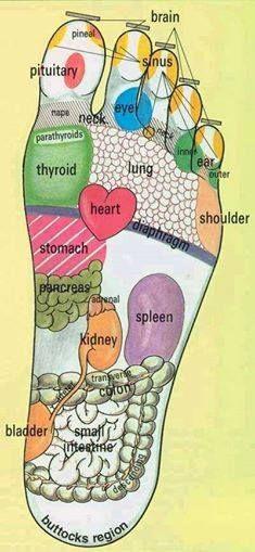 Reflexology, left foot