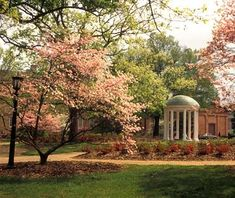 Fact: there is nothing finer than Chapel Hill in the spring.