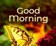 Good Morning Pictures, Photos, and Images for Facebook, Tumblr, Pinterest, and Twitter Good Morning Snoopy, Good Morning Sun, Good Morning Kisses, Cute Good Morning Quotes, Morning Sayings, Good Morning Inspirational Quotes, Good Morning Picture, Good Morning Messages, Good Morning Images